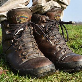 Meindl Men's Burma GTX® Boots