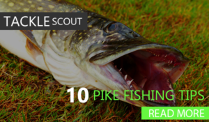10 Pike Fishing Tips