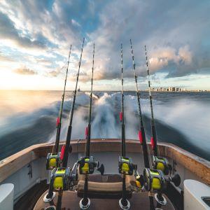 sea fishing forum list